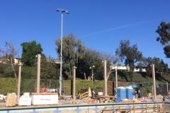 Main Pool - Shade & Musco3